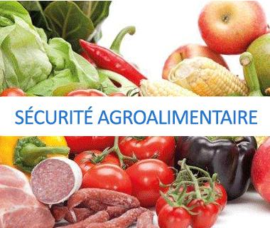Sécurité agroalimentaire